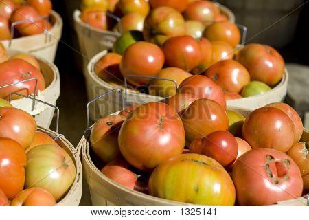 Tomato Bushels