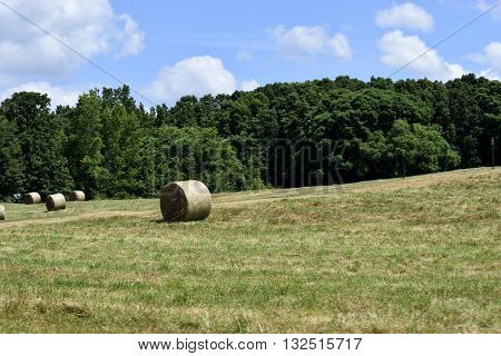 Bales of hay landscape background at Georgia, USA.
