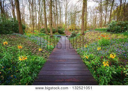 Wooden Walkway Through The Keukenhof Park In Netherlands
