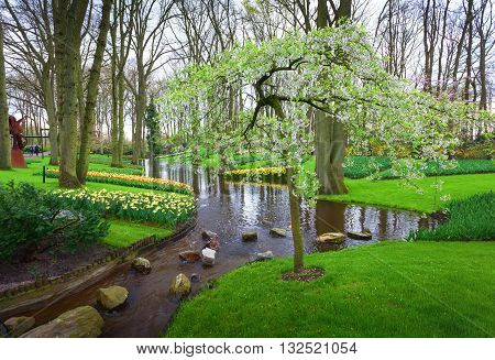 Landscape With Blooming Tree, Beautiful Flowers And Water Stream