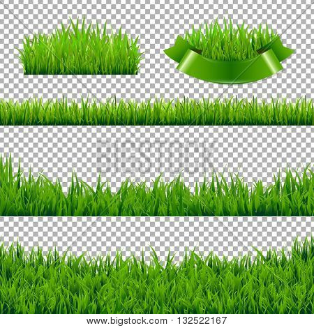 Green Grass Borders Isolated, Isolated on Transparent Background, Vector Illustration
