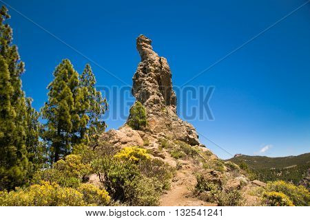 Rock at Parque Rural del Nublo in mountain of Gran Canaria, Spain.