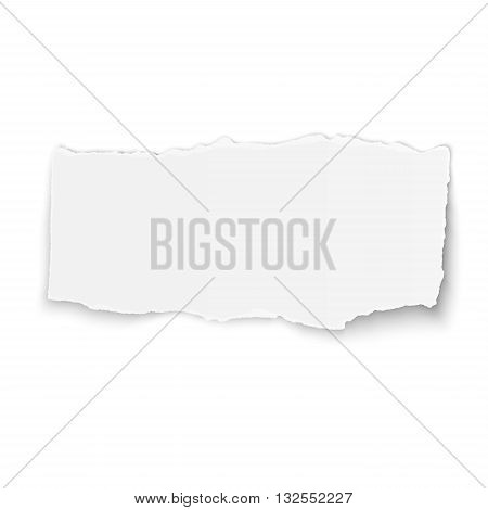 White vector paper tear placed on white background