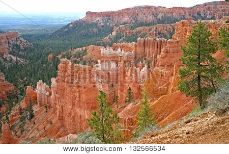 rock columns in red sandstone called