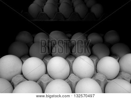 Eggs in carton tray detailed stock photos