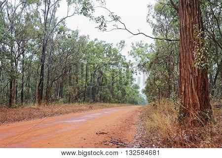 Australian outback bush road on overcast day