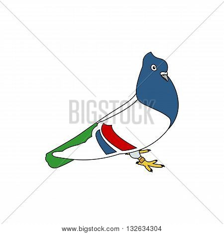 Beautiful line drawing colorful serbian highflyer pigeon vector illustration isolated on white background.