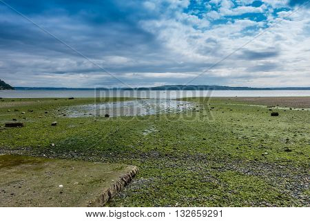 A view of the Puget Sound at low tide. Shot taken from Normandy Park Washington.