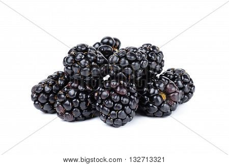 Blackberry Isolated On White Bakcground