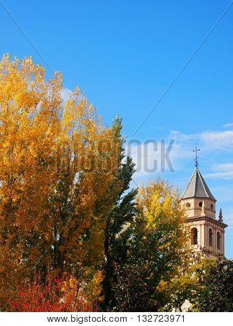 Autumn in Spain with golden ginko leaves and a church bell tower