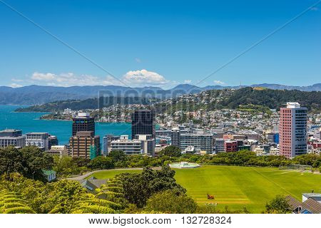 Wellington City panorama with Cricket Field in the foreground from the top of the Cable Car towards Mt. Victoria North Island New Zealand.