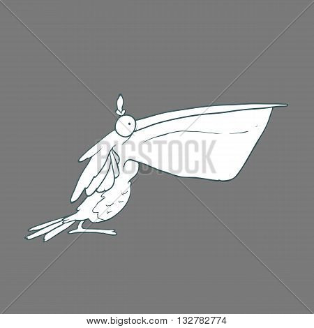 Illustration of hand drawn funny bird pelican with big beak. Black and white Vector cartoon. Concept of the character on flat background.