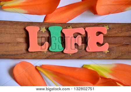 word life on   a  abstract colorful background