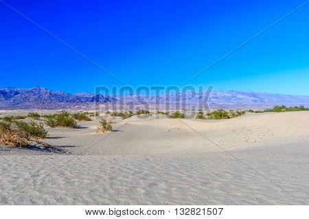 Mesquite Flat Sand Dunes, Near Stovepipe Wells Death Valley Np