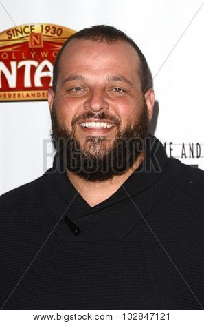 LOS ANGELES - MAY 31:  Daniel Franzese at the 42nd Street Play Opening at the Pantages Theater on May 31, 2016 in Los Angeles, CA
