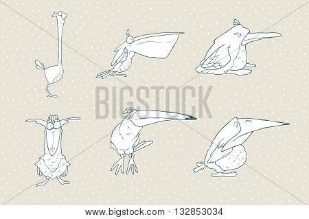 Set of cute cartoon bird isolated on white background. Vector animal illustration. Child fun pattern icon. Pelican, beak, toucan, parrot, crow, raven, penguin, ostrich