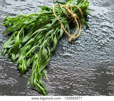 Tarragon. Estragon. Fresh sprigs of organic tarragon on a dark surface