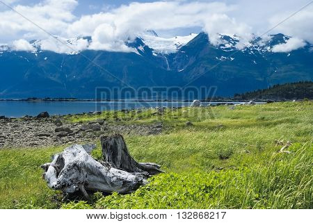 Rainbow Glacier In The Chilkat Range Near Haines, Alaska In Spring With Clouds And Melting Snow