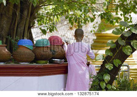 Burmese girl monk getting fresh water from a terracotta pot at the Rangoon Buddhist Monastery, Yangon Rangoon, Myanmar