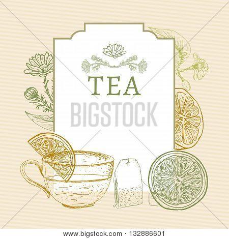 Tea time tea ceremonylemon mug of tea herbs vintage sketch vector