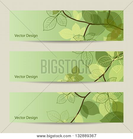 Set of horizontal banners. Spring brunch with abstract leaves on green background. Vector illustration.