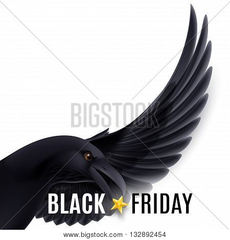 Black Friday discounts increasing consumer growth. Fly black raven