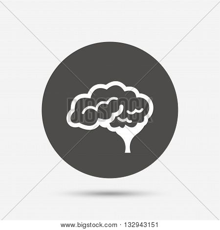 Brain with cerebellum sign icon. Human intelligent smart mind. Gray circle button with icon. Vector