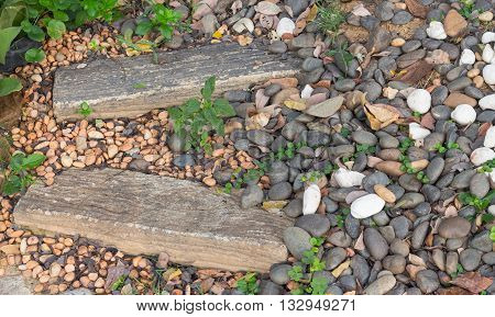 Stone walkway up in the garden natural morning.