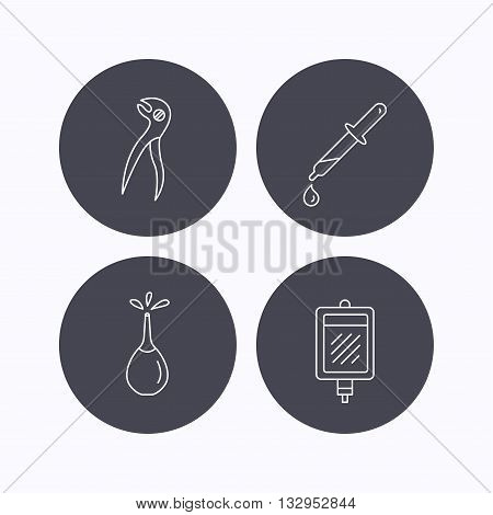 Blood donation, pipette and dental pliers icons. Clyster linear sign. Flat icons in circle buttons on white background. Vector