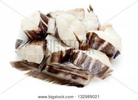 Fish chimera sea rabbit or sea rat isolated on white background