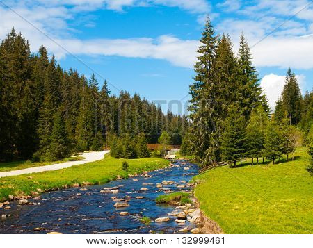 River flows through mountain landscape with coniferous tree forest, green meadows on sunny summer day under the blue sky and white clouds. Roklansky brook, Sumava National Park, Czech Republic