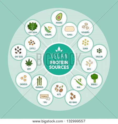 Vegan protein food sources infographic with food icons
