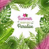 Summer tropical paradise decorative frame or background dezign with opulent rainforest plants foliage composition vector illustration poster