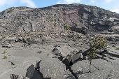 Surface of the Kilauea Iki Crater showing crumbling lava rock in Volcanoes National Park in Hawaii United States. poster