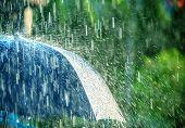 Summer Rain Storm Under Umbrella. Summer Rainy Weather poster