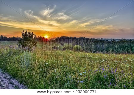 Picturesque Golden Sunbeams Of Summer Sunset Over Colorful And Fragrance Flowering Meadow With Diffe