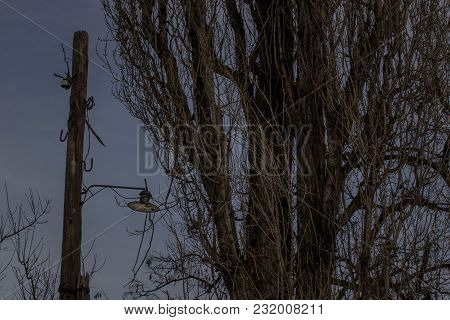 Ancient Wooden Pillar With A Lantern In The Evening Near A Mysterious Tree No One Around