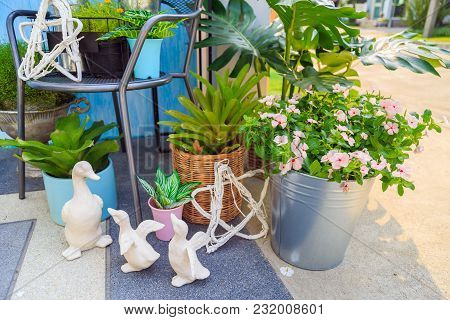White Duck Dolls Family And A White Branches Star Shape With A Pink Flowers In A Bucket And Plant In