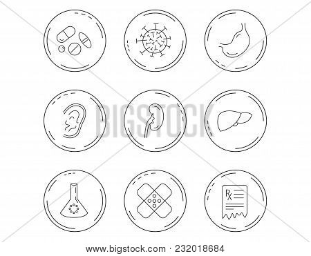 Pills, Medical Plaster And Prescription Icons. Virus, Stomach And Liver Linear Signs. Ear, Kidney An