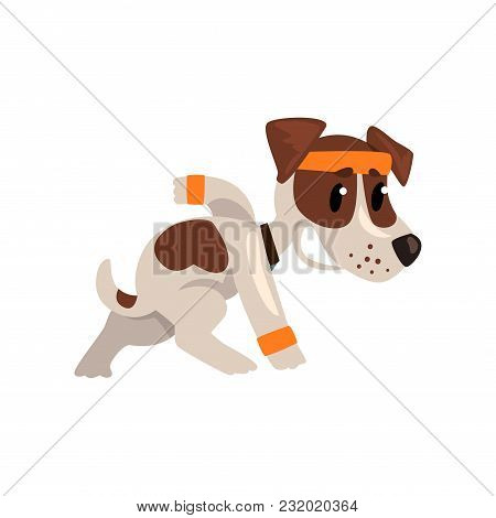 Cute Funny Jack Russell Terrier Athlete Character Doing Sports Vector Illustration Isolated On A Whi