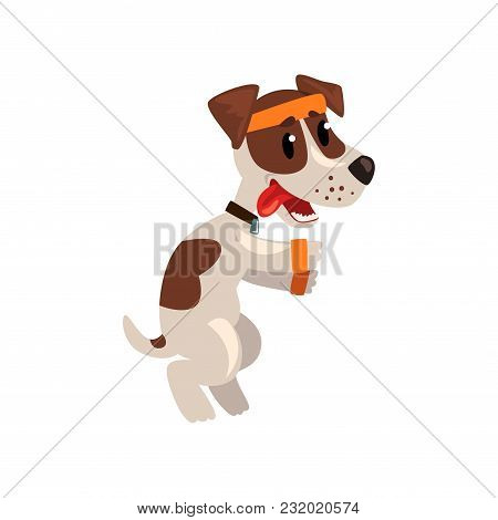 Cute Jack Russell Terrier Athlete Character Doing Sports Vector Illustration Isolated On A White Bac