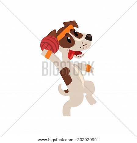 Cute Jack Russell Terrier Athlete, Playing With Ball, Funny Sportive Pet Dog Character Doing Sports