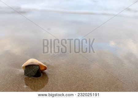 Shell And Rock On Beach As Tide Rolls In, Stones N Shell In Shallow Water