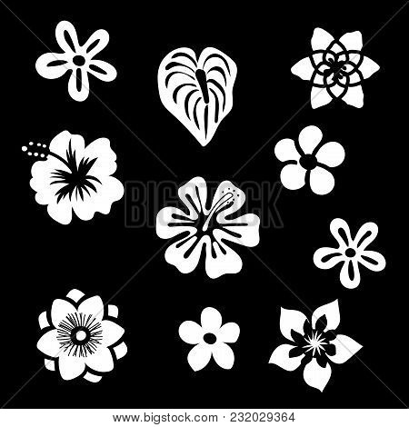 Tropical Flowers Silhouette Elements Set Isolated On Black Background. Vector Illustration In Black