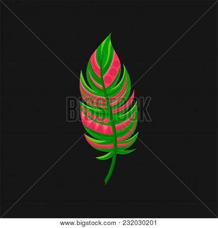 Beautiful Bright Abstract Pink And Green Feather Vector Illustration Isolated On A Black Background.