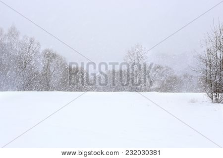 Winter Snowfall Background. View Of Snow Covered  Field And Snowflakes Falling On Trees.