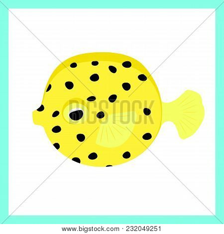 The Cube-shaped Boxfish Is Just As Cute As It Is Strange.vector Flat Illustration. Undewater Animal.