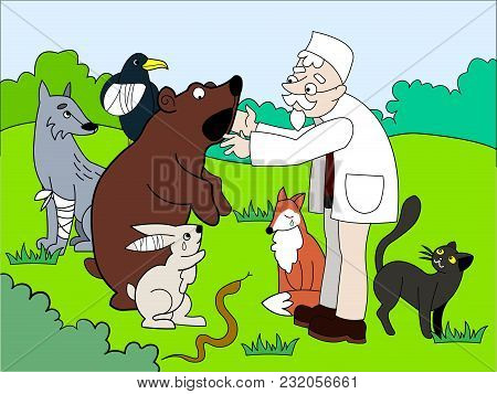 Veterinarian Treats Animals In The Forest Vector Illustration. Book Educational Game For Kids Educat