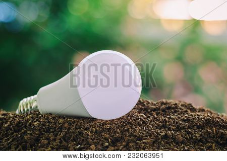 Led Light Bulb On Soil Against Blurred Natural Green Background With Copy Space For Saving Energy An