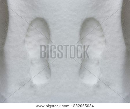 Footprint On The Snow - Natural Scenery